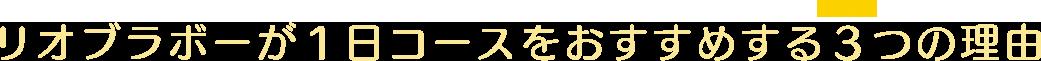 日本一の激流体験が出来る大迫力ラフティング